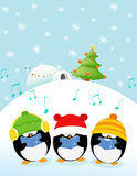 Caroler Penguins Royalty Free Stock Photos