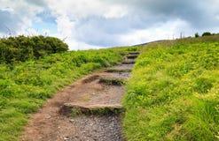 Carolina Appalachian Trail Roan Mountain del norte imagenes de archivo