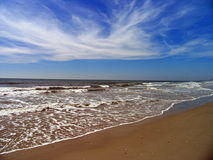 Carolina Coast. Beach on a sunny day Stock Images