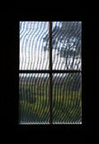 Carolina Dune Greenery Viewed thru Screen Window Stock Photography