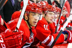 Carolina Hurricanes center Manny Malhotra Stock Images