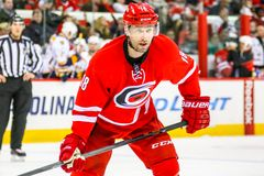 Carolina Hurricanes right wing Radek Dvorak Royalty Free Stock Image