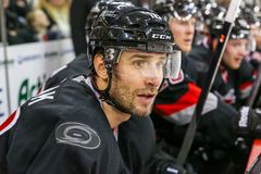 Carolina Hurricanes right wing Radek Dvorak Stock Photo