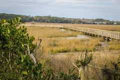 Carolina Low Country. Low country wetlands and boardwalk in Huntington Beach State Park Stock Images