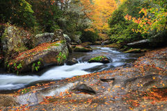 Carolina Mountain Stream Autumn norte Imagem de Stock