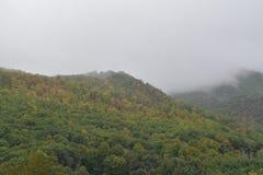 Carolina Mountains del nord nella nebbia di mattina di caduta fotografia stock libera da diritti