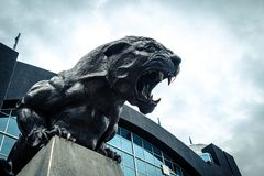 North Carolina Panthers football panther statue roaring fierce. Carolina Panthers black cat statue roaring and baring teeth in front of football stadium stock photo