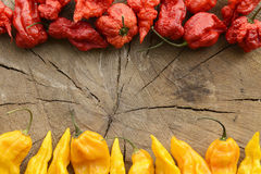 Carolina reaper and fatalii hot peppers Royalty Free Stock Images