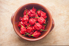 Carolina Reaper strong hot pepper Stock Images
