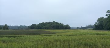 Carolina Salt Marsh del nord immagine stock libera da diritti