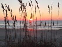 Carolina Sunrise Royalty-vrije Stock Afbeeldingen