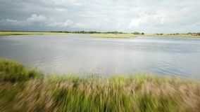 Carolina Tidal Creek Marsh del nord archivi video