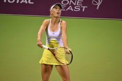 Caroline Wozniacki Royalty Free Stock Image