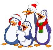 Caroling penguins Stock Photos