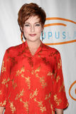 Carolyn Hennesy arrives at the 12th Annual Lupus LA Orange Ball Stock Photography