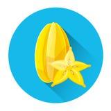 Carom Colorful Fruit Icon Stock Image