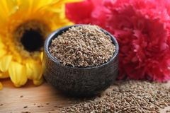 Carom seeds. Beautiful shot of carom seeds in bowl stock photo
