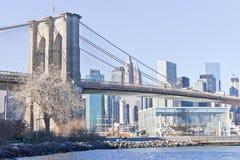Carosello del ½ s albero e del ¿ asciutti di Janesï davanti al ponte di Brooklyn a nuovo Fotografie Stock Libere da Diritti