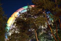 Carosello dell'oscillazione alla notte Fotografia Stock Libera da Diritti