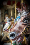 Carosello Horse Fotografie Stock Libere da Diritti