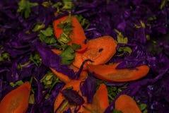 Carot-purple cabbage salad variation royalty free stock photos