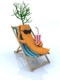 Carota che riposa su una presidenza di spiaggia Fotografie Stock