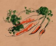 Carote dell'acquerello con il profilo nero Illustrazione disegnata a mano royalty illustrazione gratis