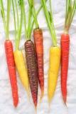 Carote dell'arcobaleno su fondo bianco Immagini Stock Libere da Diritti