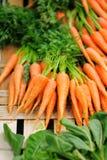 Carote ed insalata sul mercato agricolo dell'agricoltore Immagine Stock Libera da Diritti