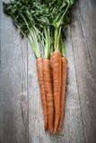 Carote organiche Fotografia Stock Libera da Diritti
