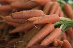 Carote organiche ad un mercato degli agricoltori fotografia stock