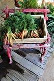 Carote organiche in cassa sul banco antico Immagini Stock Libere da Diritti