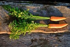 Carote organiche fresche Immagini Stock Libere da Diritti