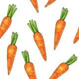 Carote su un fondo bianco Indicatori del disegno di colore Verdura agricola Reticolo senza giunte illustrazione vettoriale