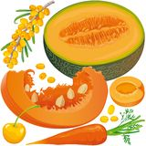 Carotene products set Stock Image