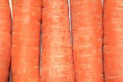 Carots Stock Photo