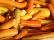 Carots jaunes et oranges Images stock