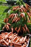 Carott fresco ad un servizio organico dei coltivatori immagine stock libera da diritti