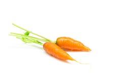 Carotte, carotte de bébé Photo libre de droits