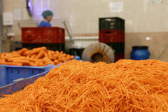 Carotte déchiquetée dans une usine de traitement des denrées alimentaires des produits alimentaires photos stock