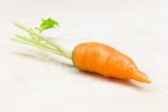 Carotte, légume de carotte de bébé Image stock