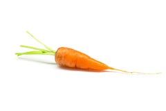 Carottes, carottes de bébé Photo libre de droits