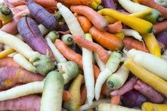 Carottes colorées fraîches au marché image libre de droits