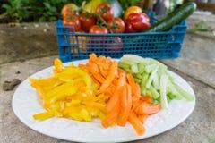 Carottes coupées en tranches céleri et poivrons d'un plat Image libre de droits