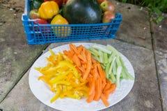Carottes coupées en tranches céleri et poivrons d'un plat Image stock