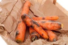 Carottes putréfiées Légumes noirs et moisis gaspillés Allé outre du foo photographie stock libre de droits