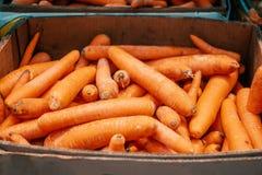 Carottes rouges dans une boîte de papier sur le marché Légumes frais offrant par des agriculteurs, aliment biologique images stock