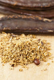 Caroube, siliqua de Ceratonia Photos stock
