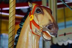 A carousal horse Royalty Free Stock Photography