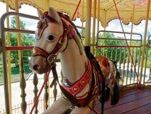 Carousel веселый идет лошади лошади круга Стоковое Изображение RF